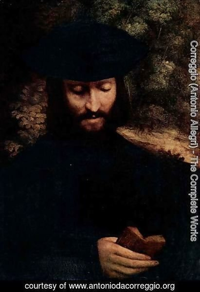 Correggio (Antonio Allegri) - Portrait of a man